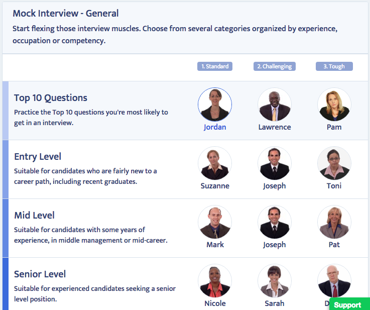 screenshot of Big Interview interview questions matrix