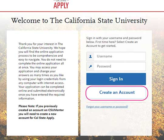 csu application essay prompts The cane in ancient history have you ever thought about what is the most wonderful vacation will living in a luxurious hotel, enjoying the expensive private beach.