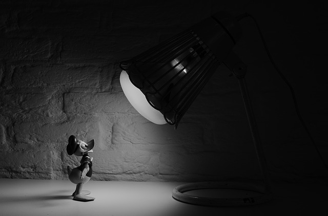 donald duck in spotlight